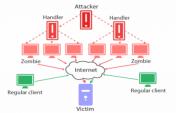 DDos Korumalı Hosting
